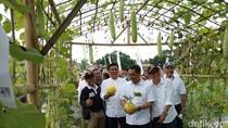 Warga Pesta Buah Lokal di Agro Expo Banyuwangi