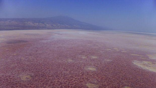 Danau Natron yang kemerahan dilihat dari udara (Thinkstock)