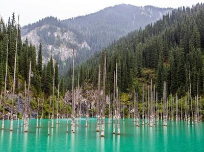 Cuma di Kazakhstan, Danau Ajaib dengan Hutan di Dalamnya