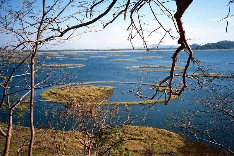 Danau ini bernama Danau Loktak. Berada di Provinsi Manipur India yang berbatasan dengan Myanmar, jaraknya 1 jam penerbangan dari Kalkuta. (Incredible India)