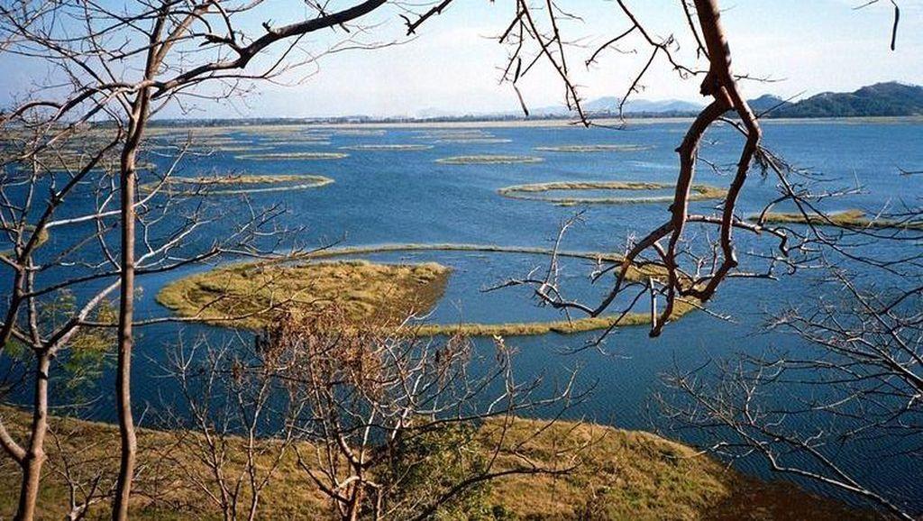 Foto: Danau Ajaib yang Pulaunya Bisa Bergerak Sendiri