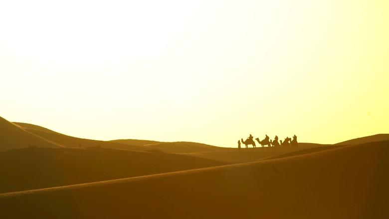 Kilau Mutiara dari Afrika Utara