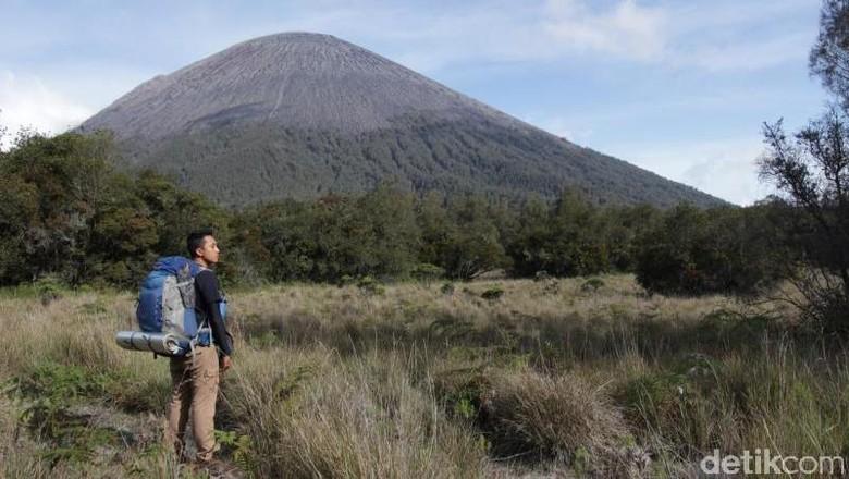 Jalur pendakian di Gunung Semeru (Pradikta/dTraveler)
