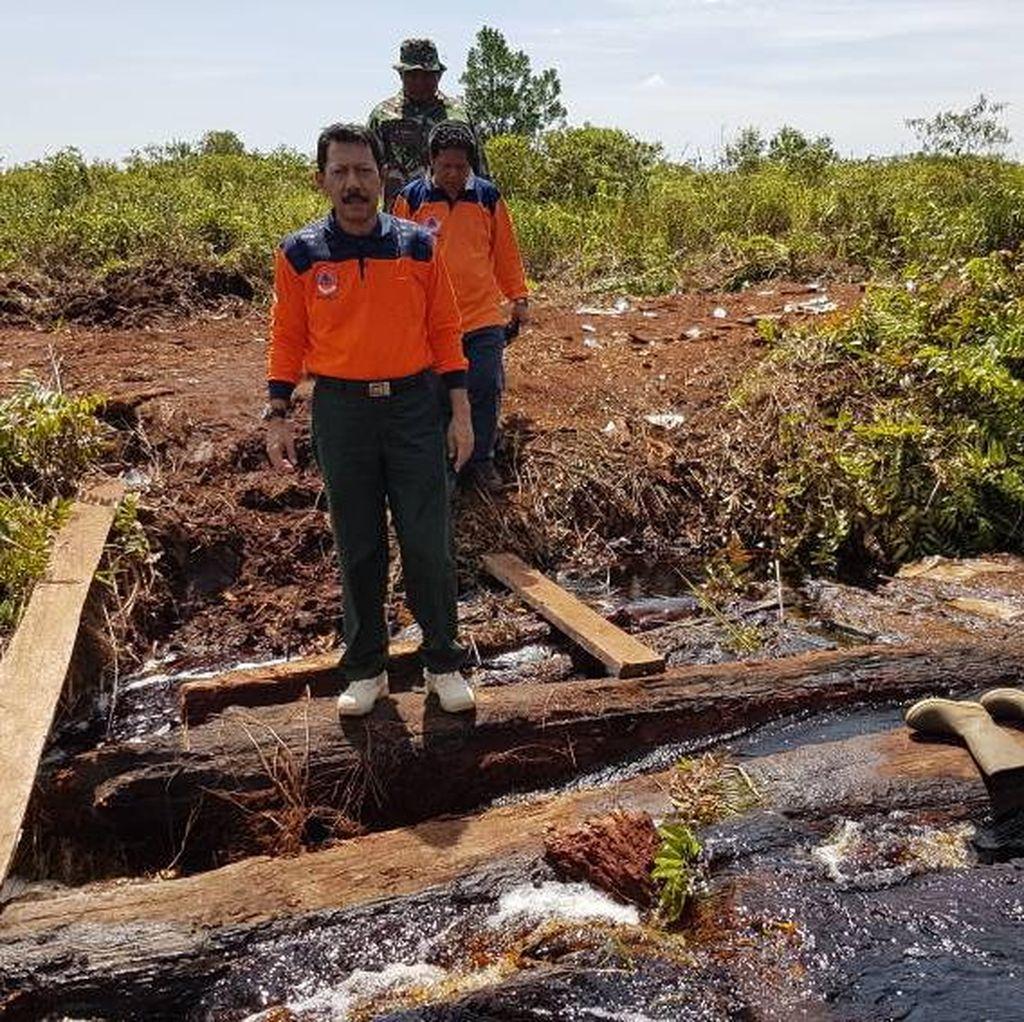 Hutan dan Lahan Terbakar di Riau Mencapai 549 Hektare