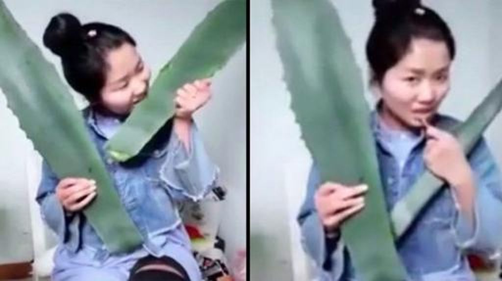 Makan Lidah Buaya Biar Viral, Gadis Ini Hampir Tewas