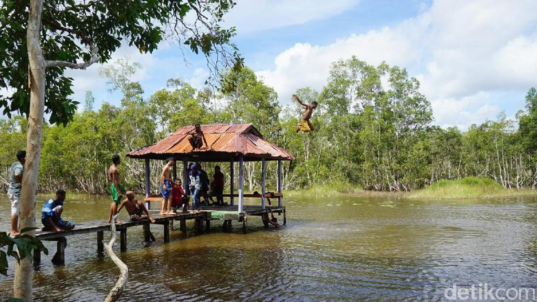 Biras, kolam alami di Merauke (Afif/detikTravel)