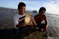 Hasil penjualan dibagi ke banyak nelayan.