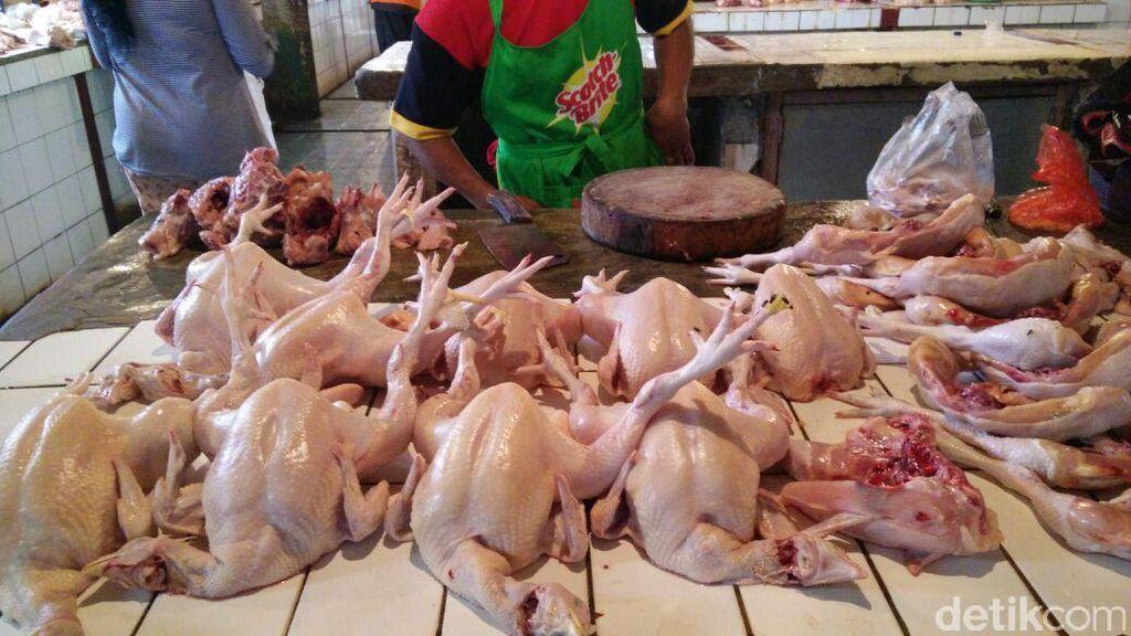 Pedagang Ayam Tambah Stok 1.000 Ekor Jelang Tahun Baru