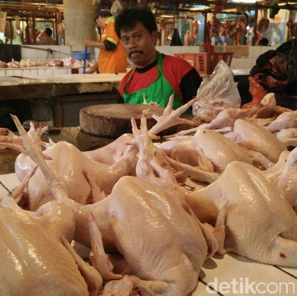 Kemendag Bakal Atur Harga Daging Ayam Jadi Rp 33.000/Ekor