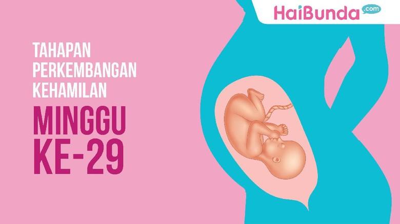 Tahapan kehamilan 29 minggu/ Foto: dok HaiBunda