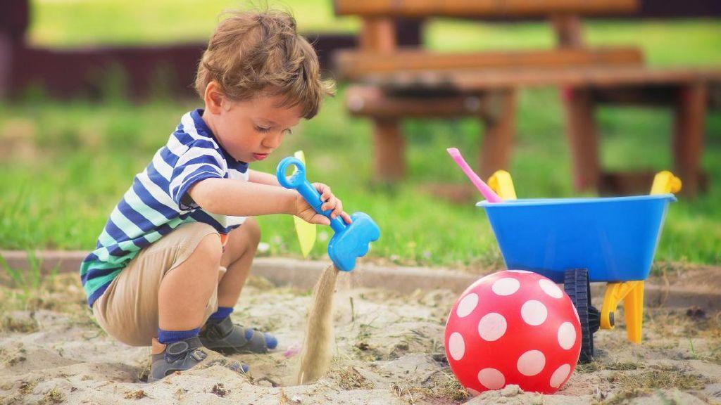 Waspada! Kuman Diare Berbahaya Bisa Sembunyi di Kotak Pasir Anak