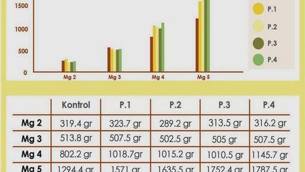 Diagram pertumbuhan berat badan ayam yang mengonsumsi aditif wortel