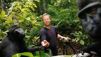 Begini Akhir Kasus Pelik Monyet Selfie di Sulawesi