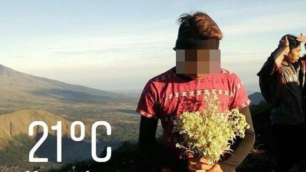 Foto: Jangan Ditiru! Kelakuan Pendaki Ndeso Petik Edelweiss Rinjani