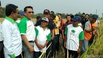 Ketua HKTI Moeldoko Pamer Panen Padi M400 di Jombang