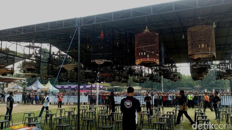 3 Ribu Burung Berkicau Berebut Piala Wali Kota Mojokerto Cup II
