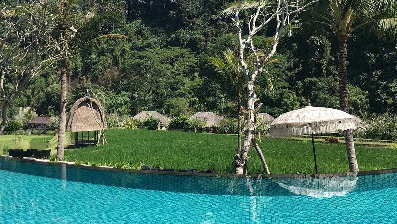 Gary Neville adalah legenda klub Manchester United. Bek sayap jagoan ini terlihat liburan ke Bali sepekan yang lalu. Lewat Instagram, Gary Neville berbagi keindahan Bali dan juga resort tempatnya menginap (Instagram/@gneville2)
