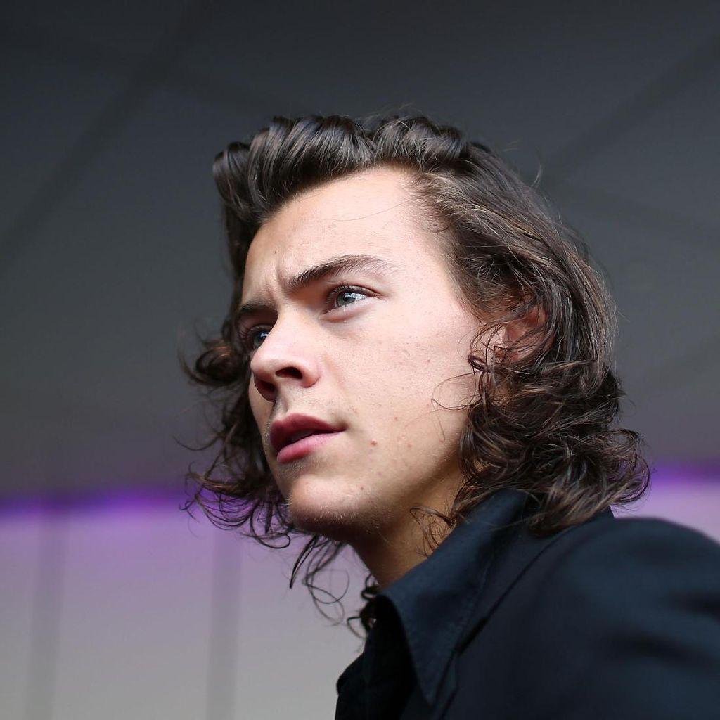 Duh! Harry Styles Alami Pelecehan Seksual di Konser