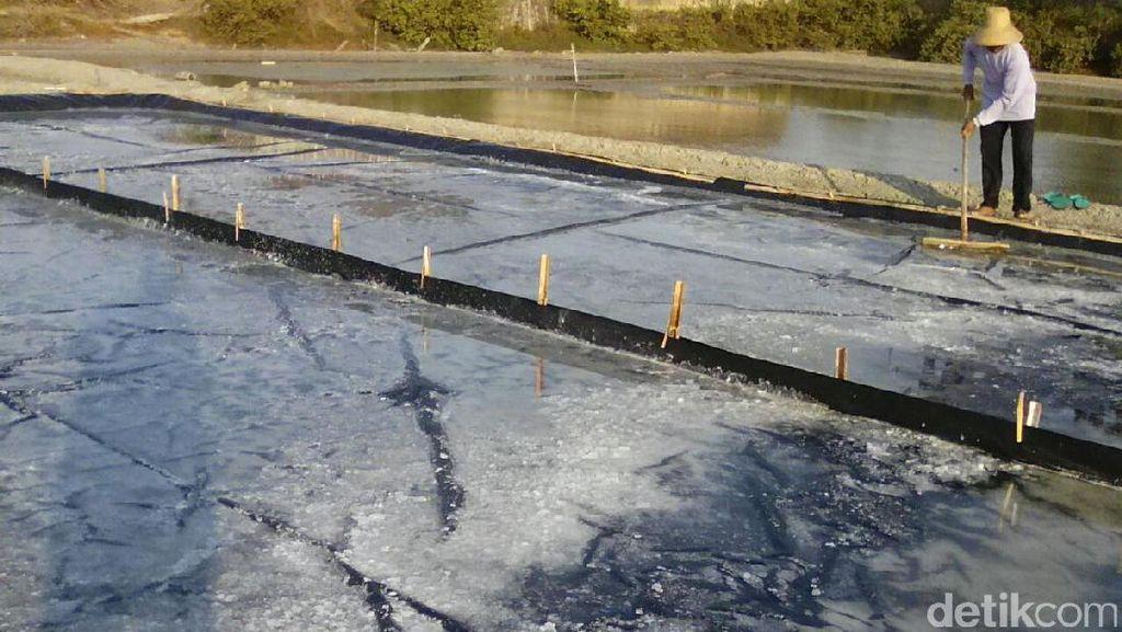 Atasi Kelangkaan, RI Perlu Gudang Garam Bermuatan 100.000 Ton