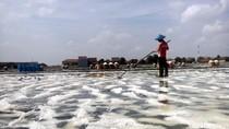 Petani Garam Jepara Tak Menyoal Impor, Asal Tidak Lemahkan Harga