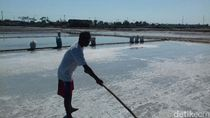 Petani di Rembang Khawatir Tersaingi Garam Impor