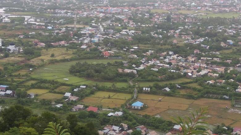 Foto: Lanskap Kota Banda Aceh dilihat dari Bukit Goh Cut (Agus Setyadi/detikTravel)