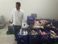 Denyut Pusat Bisnis Ikan Natuna yang Bakal Diresmikan Jokowi