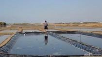 Garam Langka, 55 Industri Garam Yodium di Jawa Tengah Tutup