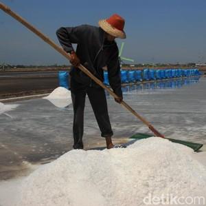 Pasang Target RI Tak Impor Garam 2020, Begini Jurus Luhut