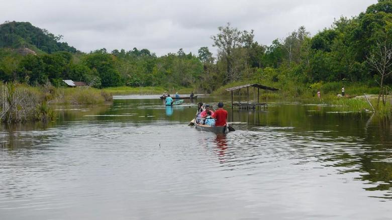 Foto: Danau Padong Pangeran di Sanggau (Kurnia/detikTravel)