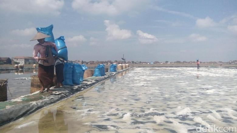 Dukung Produksi Garam, Kemenhub Kembangkan Pelabuhan di NTT