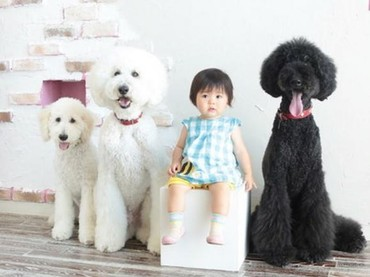 Mame berpose dulu ya sama Qoo (10), Riku (8), dan Gaku (5 bulan) (Foto: Instagram/ @tamanegi.qoo.riku)