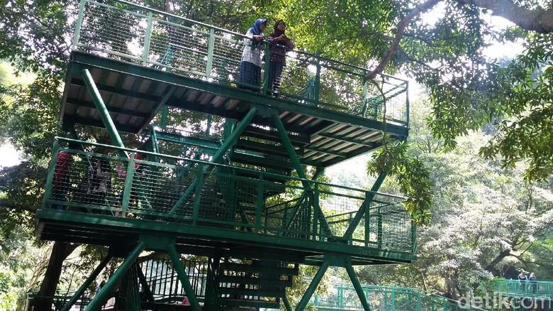 Segarnya Hutan Kota Babakan Siliwangi Bandung