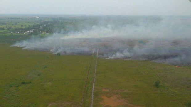 Kebakaran sulit dipadamkan karena angin kencang dan alang-alang yang mudah terbakar