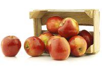 Dapatkan 8 Manfaat Makan Apel, Turunkan Berat Badan hingga Perkuat Gusi