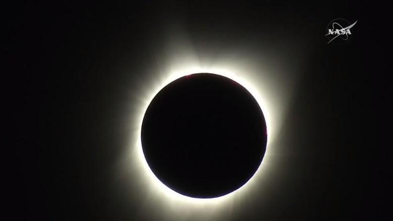 Gerhana Matahari Total Muncul, Langit Amerika Serikat Gelap