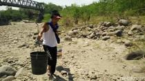 Kekeringan di Bekasi, Warga Jalan Sejauh 5 Km ke Sungai Cipamingkis