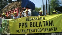 Petani Tebu di Yogyakarta Demo, Harga Gula Rendah