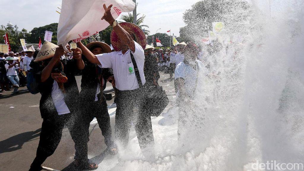 Tuntut Harga Gula Naik, Ribuan Petani Tebu Demo di Istana