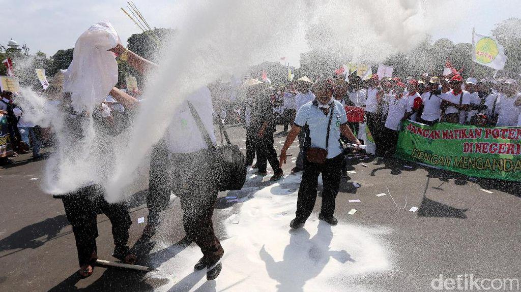 Kesal, Petani Tebu Buang Gula Impor di Jalan Depan Istana