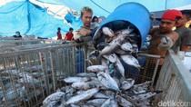 Indonesia Segera Punya Pasar Ikan Modern di Muara Baru