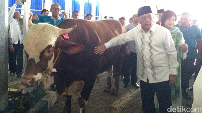 Satu ekor sapi tersebut diqurbankan atas nama Agus DW Martowardojo, Berliantin S Martowardojo, Adri Prasetyo Martowardojo dan Aswin Dwianto Martowardojo.