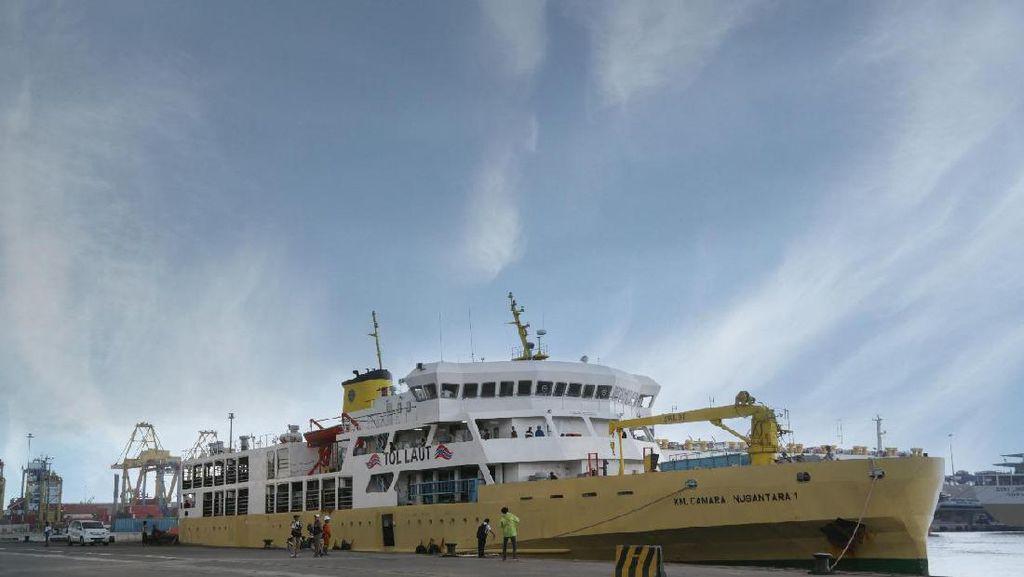 Kapal Ternak dari DKI ke NTT Kosong, Mau Diisi Apa?