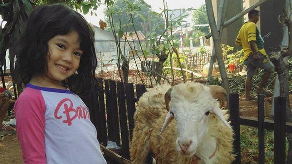 Foto: Lucu! Ekspresi Anak Saat Foto Sama Hewan Kurban