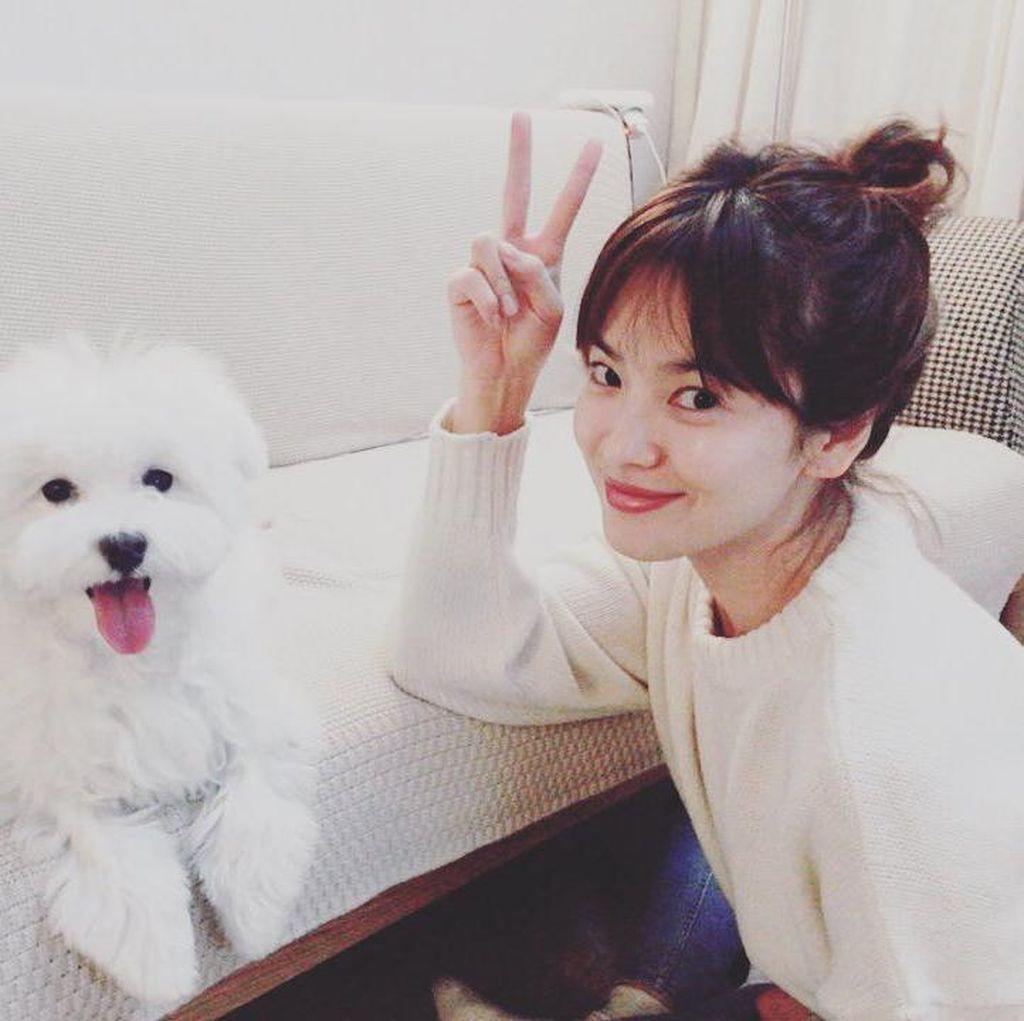 Inikah Gaun yang Dipakai Song Hye Kyo untuk Resepsi Pernikahan?