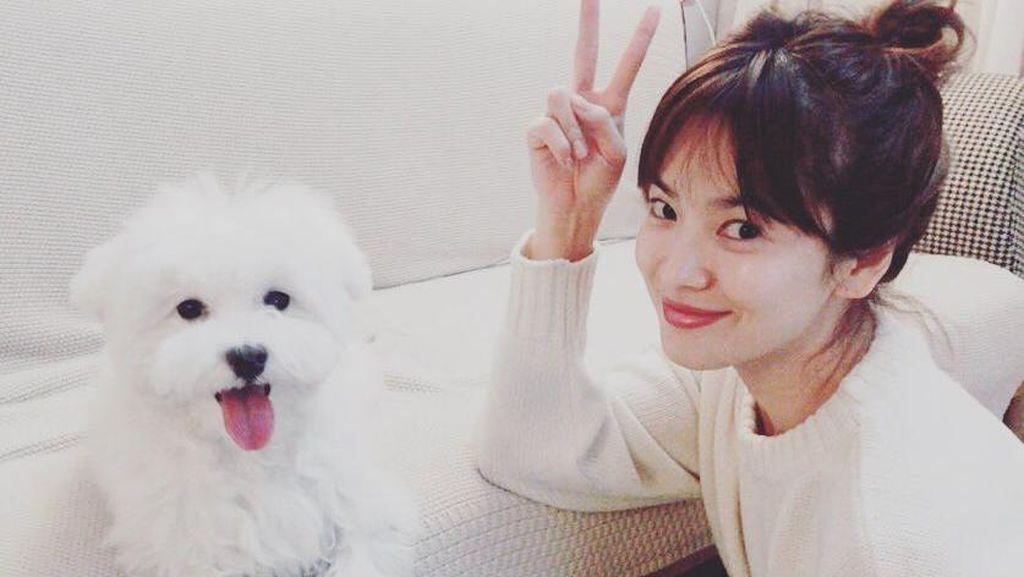 Foto: Bikin Iri, Wajah Song Hye Kyo yang Tetap Cantik Tanpa Makeup