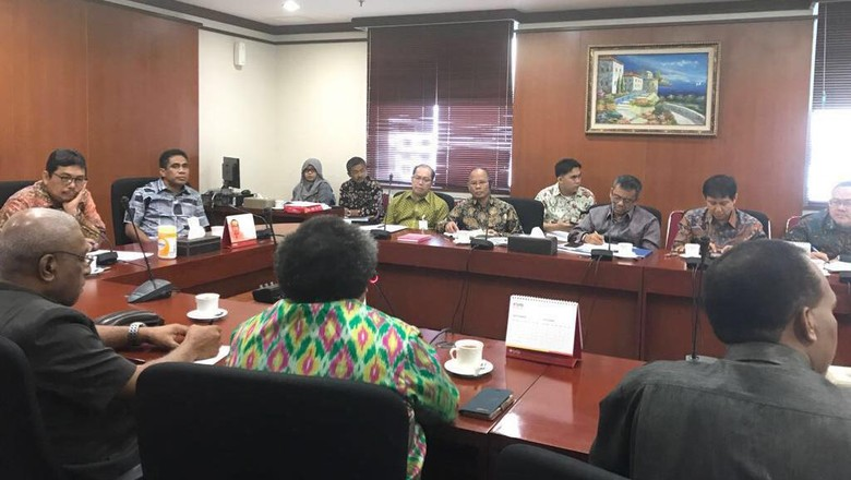Pemprov Papua Usul Daerah Dapat Jatah 20% Saham Freeport