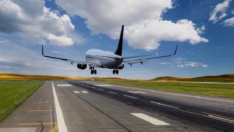 Viral, Video Pramugari Jatuh dari Pesawat Saat Siapkan Makanan