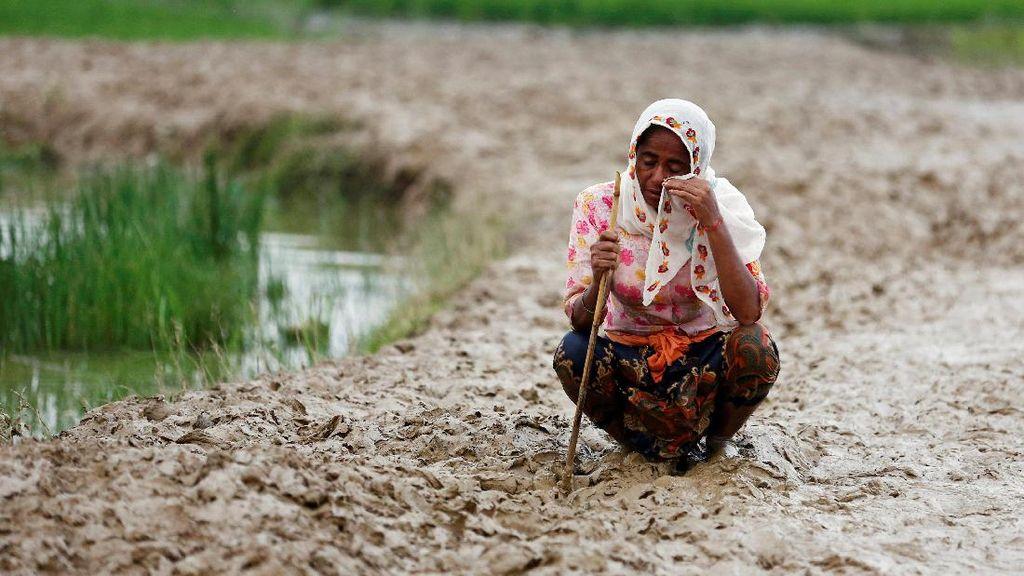 Siapa Mau Terima Rohingya
