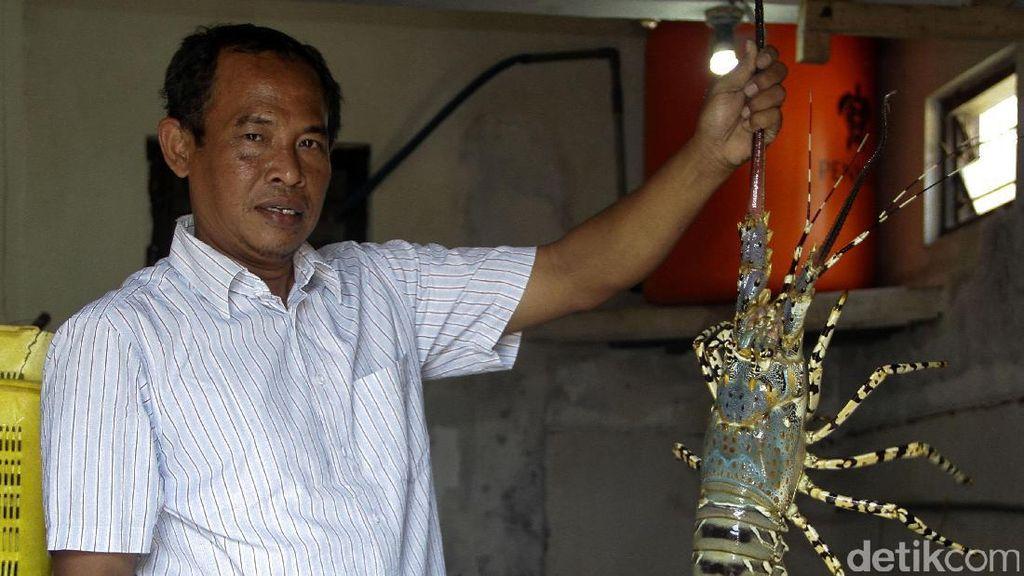 Ini Hasil Kerja Keras Mitra Binaan Semen Indonesia